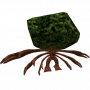 creatures:treant.png